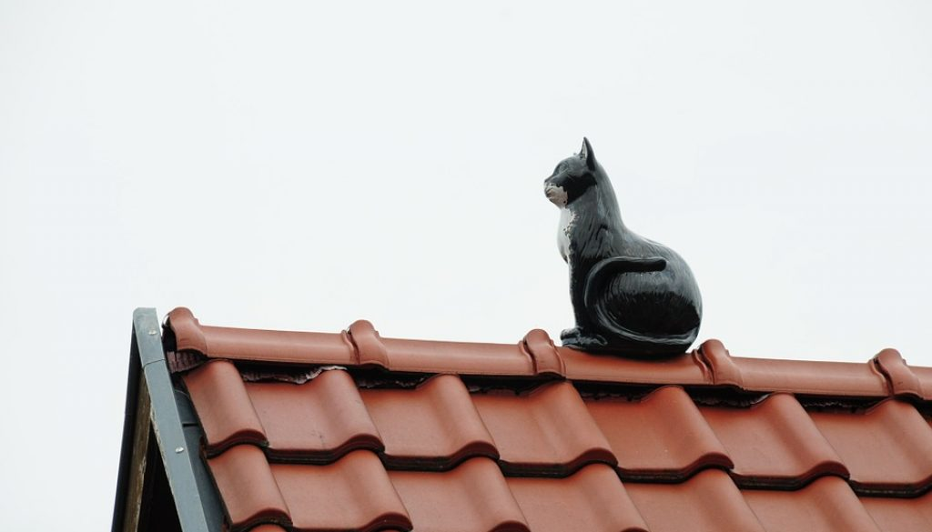 roof-858477_960_720